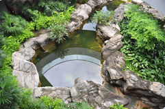 Roof garden with fish pond Stock Photos