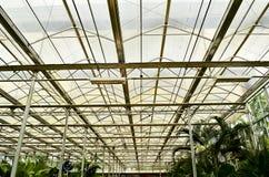 Roof garden Stock Images