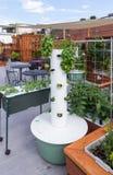 Roof Garden Stock Photos