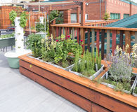 Roof Garden Royalty Free Stock Images