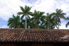 Roof in Granada, Nicaragua Royalty Free Stock Image