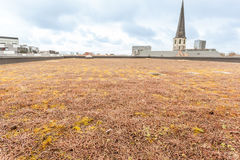 Roof with green Royalty Free Stock Photography