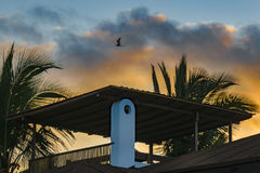Roof House and Sky Royalty Free Stock Photography