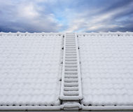 Roof ladder in snow Royalty Free Stock Images