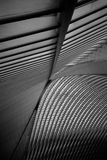 The roof of Liège-Guillemins railway station Stock Image
