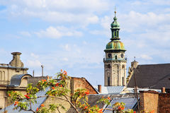 Roof in Lviv. View over the roof of Lviv. there is a bell tower with a clock Royalty Free Stock Images