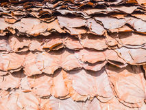 Roof made of dried leaves Royalty Free Stock Photography