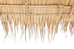 Roof made from dry grass. Of house in rural, Thailand Royalty Free Stock Photography