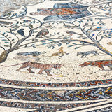 roof mosaic in the  city morocco africa and history travel Stock Images