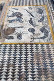 roof mosaic in the  fish africa and history travel Royalty Free Stock Photography