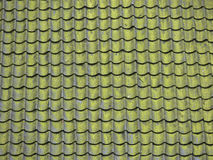 Roof-moss. An old roof covered with moss and green lichen Royalty Free Stock Images