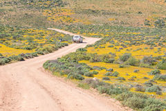 Roof of Namaqualand trail Royalty Free Stock Images