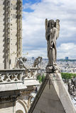 Roof of Notre Dame de Paris Stock Image
