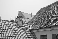 Roof of old building in center of Klaipeda. Stock Images