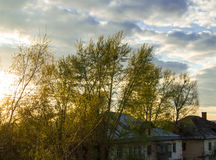 Roof of the old house behind trees against cloudy sky with clouds and sunset Royalty Free Stock Photography