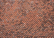 Roof with old tiles - RAW format royalty free stock photography