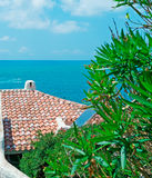 Roof and oleander Royalty Free Stock Photos