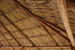 Roof of palm branches Royalty Free Stock Images