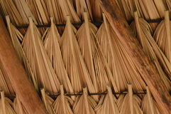 Roof of palm branches Stock Photo