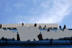 Roof with pigeons Stock Photography