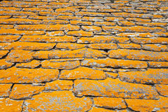 Roof, shindles, natural stone, quartzite Stock Photography