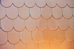 Roof shingle. Detail of roof shingle on exhibition stand at construction fair Stock Photography
