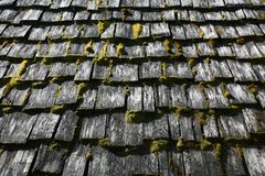 Roof shingles. Moss covered cedar style roof shingles Royalty Free Stock Photo