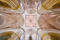 Roof of Siguenza Cathedral, Spain Stock Image