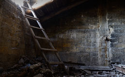 Roof space of abandoned house with old floor covered with guano, Royalty Free Stock Photo