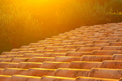 Roof at sunset. Detail of a house roof at dusk Stock Image