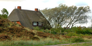 Roof thatched Cottage Royalty Free Stock Image