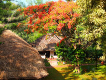 Roof Thatching in Kerala, India Stock Images