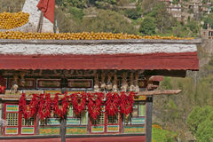 The roof of a Tibetan folk house. Corns and red peppers are dried under the sun on the roof of a Tibetan folk house Royalty Free Stock Photo