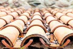 Roof tile with leaves and water in rows. Royalty Free Stock Photos