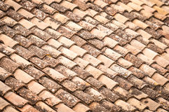 Roof tile with leaves and water in rows. Close up detail of red clay roof tile with leaves and rainwater between rows in perspective view. Construction Royalty Free Stock Images