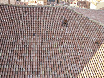 roof tile in a old house Royalty Free Stock Images