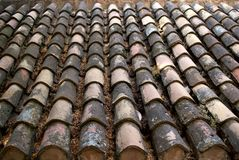 Roof tiles. Stock Images
