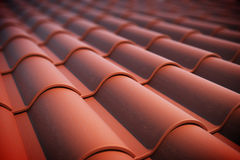 Roof tiles. Stock Photography
