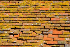 Roof tiles. Red clay roof tiles partly coverd with lichen Royalty Free Stock Photography