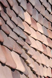 Roof tiles of Casa Batllo, Barcelona Royalty Free Stock Image