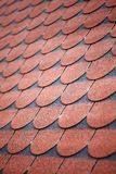 Roof tiles. Color picture of some roof with tiles Royalty Free Stock Image