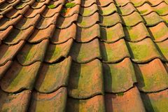 Roof tiles in Dutch Open Air Museum in Arnhem Royalty Free Stock Photo