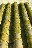 Roof tiles. Fortress in Carmona, Spain Royalty Free Stock Image