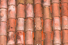 Roof tiles of a italian house in Bologna Stock Photography