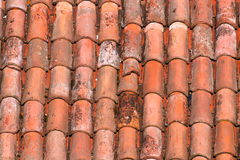Roof tiles of a italian house in Bologna Royalty Free Stock Images