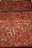 Roof tiles of a italian house in Bologna Royalty Free Stock Image