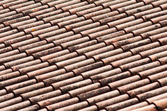 Roof tiles with lichens. Tipical Italian Roof tiles viewed in perspective Stock Image