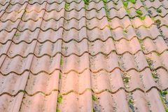 Roof Tiles On Old House Closeups Royalty Free Stock Photo
