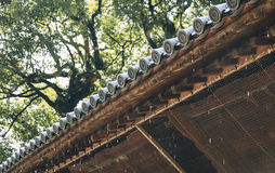 Roof tiles with rain dropping Japan Architecture details Royalty Free Stock Photography