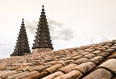 Roof Top Domes on the Palais Des Papes Stock Images
